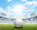 Cricket Stadium And Ball Royalty Free Stock Photo