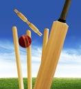 Cricket stumps Royalty Free Stock Photo