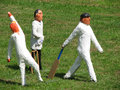 Cricket team Royalty Free Stock Photo