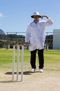Cricket umpire signaling one short sign during match Royalty Free Stock Photo