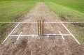 Cricket wickets playing pitch grounds placed and white line creases ready for sporting game on Royalty Free Stock Image