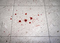 Crime Scene Blood Spatter Royalty Free Stock Photo