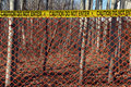 Crime scene with red fence in the woods Stock Images