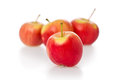 Crimson Gold Apples Royalty Free Stock Photos