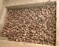 Crisoles en una tumba antigua Fotos de archivo