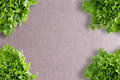 Crisp fresh frilly green lettuce corner border over a neutral beige linen textile with central copyspace viewed from above Royalty Free Stock Image
