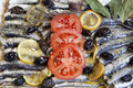 Crispy baked fresh sardines mackerel fishes mediterranean with organic tomato laurel rosemary and tasty olives selective focus Royalty Free Stock Photos