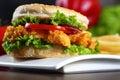 Crispy chicken burger a close up of Royalty Free Stock Photos