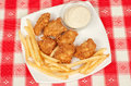 Crispy chicken with white sauce and fries on a plate Royalty Free Stock Images