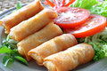 Crispy chinese traditional spring rolls food on dish Stock Photography