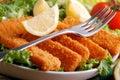 Crispy fish sticks Royalty Free Stock Photo