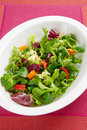 Crispy leafy salad in bowl Royalty Free Stock Photography