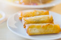 Crispy spring rolls Thai Chinese food appetizer Royalty Free Stock Photo