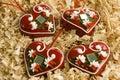 Croatian warm hearts Royalty Free Stock Photo