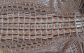 Crocodile leather part of sell in market Stock Photos