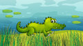 A crocodile beside the pond illustration of Stock Photo