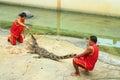 Crocodile show Royalty Free Stock Photo