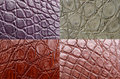 Crocodile skin Stock Photos