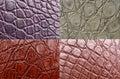 Crocodile skin Royalty Free Stock Photo