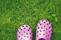 Crocs Stock Photography