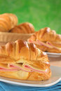 Croissant with Ham and Cheese Stock Image