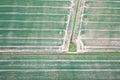 Crop fields Royalty Free Stock Photo