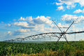 Crop irrigation using the center pivot sprinkler system Stock Photography