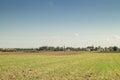 Crop land fields
