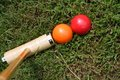Croquet Royalty Free Stock Image
