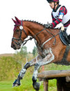 Cross-Country, horseback jumping in splashes water Stock Photography