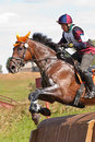 Cross-Country, man horseback jumping Royalty Free Stock Images