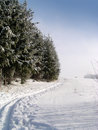Cross country ski trail Stock Photo