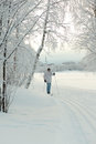 Cross country skiing in finland Royalty Free Stock Image