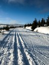 Cross country skiing trail jizera mountains czech republic Stock Image