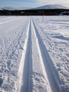 Cross-country tracks in fresh snow Royalty Free Stock Photo
