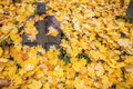 A cross monument in a cemetery with fall leaves the background Royalty Free Stock Image
