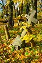 The cross in a old cemetery Stock Image