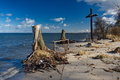 A cross at a sea shore among dead trees washed by waves Stock Photography