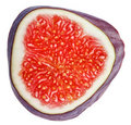 Cross-section of fig tree fruit Stock Image