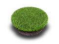 Cross section of ground with grass  on white Royalty Free Stock Photo