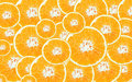 Cross section of oranges for background Royalty Free Stock Image