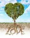 Kríž časť z pôda zobrazené strom srdce v tvare jeho koreň