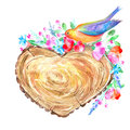 Cross section tree of a heart shaped, bird and floral wreath. Royalty Free Stock Photo