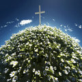 Cross surrounded by flowers Stock Photos