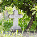 Cross on tombstone under a green tree Stock Photo