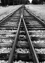 Crossing the tracks Royalty Free Stock Photo