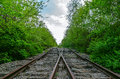 Crossing of two railroads in wood Royalty Free Stock Photo