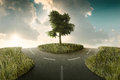 Crossroad road bifurcation with tree beetwin in a countryside landscape Royalty Free Stock Photo