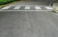 Crosswalk on asphalt road Royalty Free Stock Photo