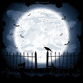 Crow in cemetery scary halloween night background the illustration Stock Photos
